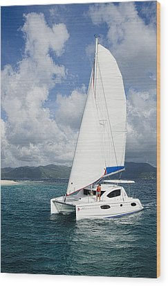 Sunsail Catamaran Wood Print