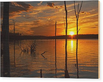 Wood Print featuring the photograph sunset @ Reservoir by Angel Cher