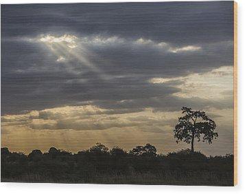 Sunset Africa 2 Wood Print
