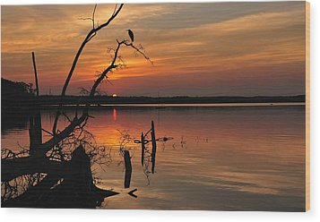 Wood Print featuring the photograph Sunset And Heron by Angel Cher