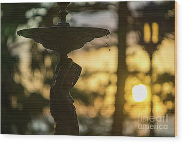 Wood Print featuring the photograph Sunset At Alameda Apodaca Cadiz Spain by Pablo Avanzini