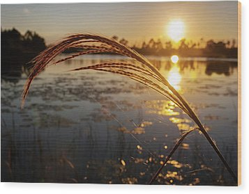 Wood Print featuring the photograph Sunset At Gator Hole 2 by Arthur Dodd
