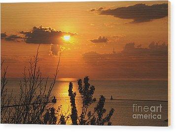 Sunset At Lake Huron Wood Print by Joe  Ng