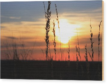 Sunset At Monument Hill Wood Print by Toni Hopper