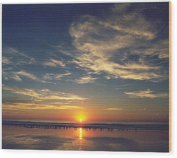Sunset At Moonlight Beach Wood Print by PJ  Cloud