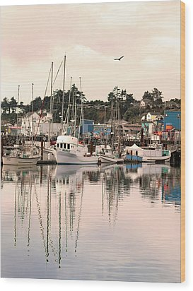 Wood Print featuring the photograph Sunset At The Marina by Diane Schuster
