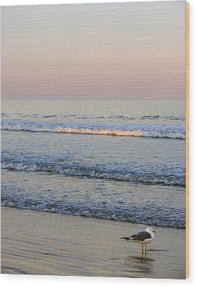 Sunset Atlantic Beach Florida Wood Print by Ann Tracy