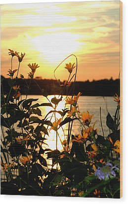 Sunset Central Park Wood Print
