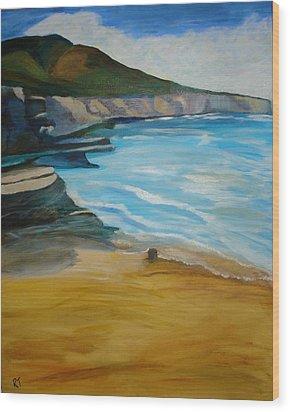 Sunset Cliffs Wood Print by Rita Tortorelli