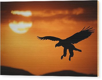 Wood Print featuring the mixed media Sunset Eagle by Riana Van Staden