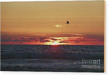 Sunset Flight Wood Print by Nicki McManus