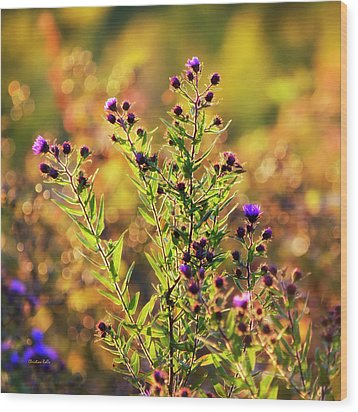 Wood Print featuring the photograph Sunset Flowers by Christina Rollo