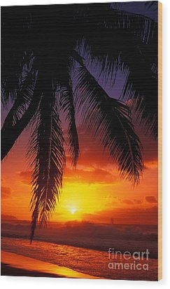 Sunset From The Beach Wood Print by Vince Cavataio - Printscapes