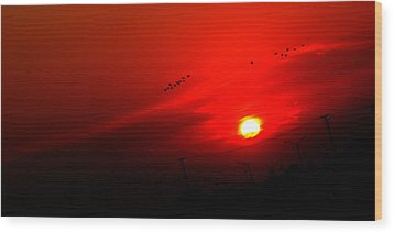 Sunset Geese Leaving Disappearing City - 0814  Wood Print by Michael Bessler