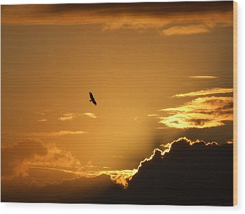 Wood Print featuring the photograph Sunset Glide by Mark Alan Perry