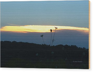 Sunset Gold Stripe Queen Anne Wood Print