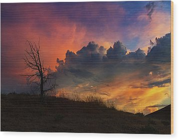 Sunset In Central Oregon Wood Print by David Gn