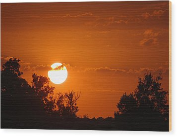 Wood Print featuring the photograph Sunset In Charleston by Donna Bentley