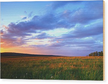 Sunset In Ithaca South Hill Wood Print