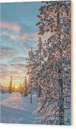 Wood Print featuring the photograph Sunset In Lapland by Delphimages Photo Creations