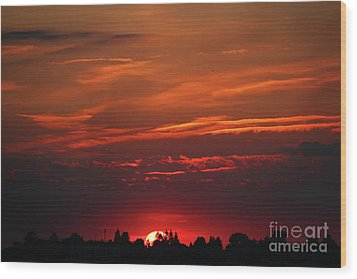 Sunset In The City Wood Print by Mariola Bitner