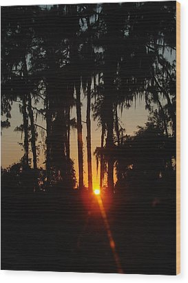 Sunset In The Woods Wood Print by Kimberly Camacho