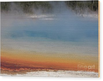 Sunset Lake In Black Sand Basin Yellowstone National Park Wood Print by Louise Heusinkveld