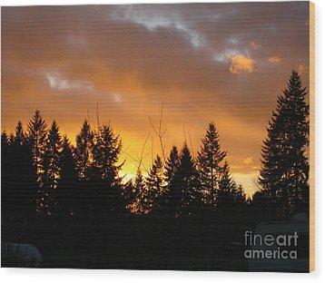 Sunset My Front Yard Wood Print by Mary Jo Zorad