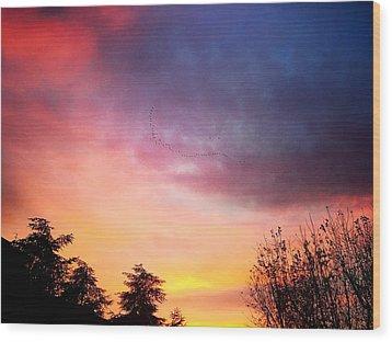 Sunset Wood Print by Niki Mastromonaco