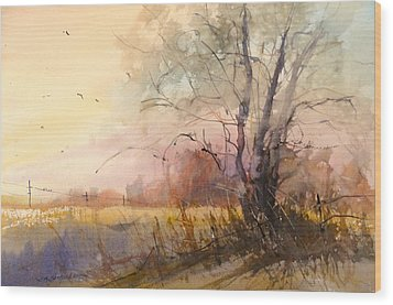 Sunset On 108th Wood Print