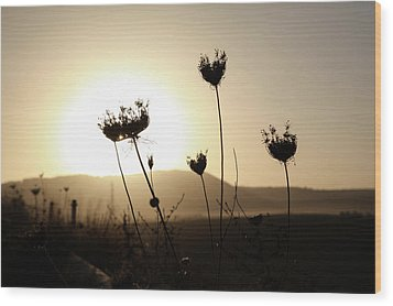 Sunset On Galilee Road Wood Print by Yoel Koskas
