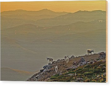 Wood Print featuring the photograph Sunset On The Edge by Scott Mahon