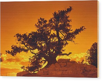 Sunset On The North Rim Wood Print