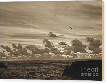 Wood Print featuring the photograph Sunset On The Tasman Sea by Yurix Sardinelly