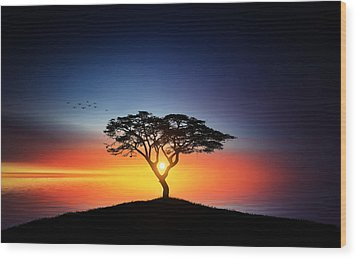 Sunset On The Tree Wood Print