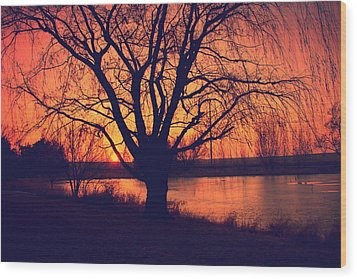 Sunset On Willow Pond Wood Print by Kathy M Krause