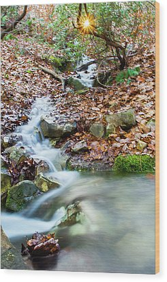 Wood Print featuring the photograph Sunset Over An Oak Mountain Stream by Parker Cunningham