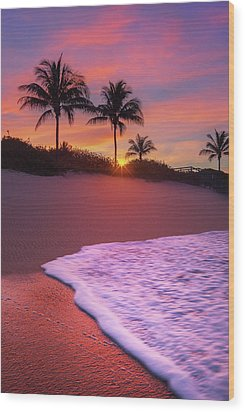 Sunset Over Coral Cove Park In Jupiter, Florida Wood Print