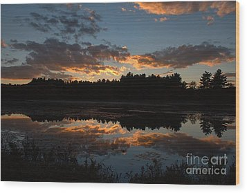 Sunset Over Cranberry Bogs Wood Print