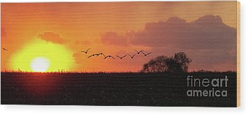Sunset Over Easy Wood Print by Sue Stefanowicz