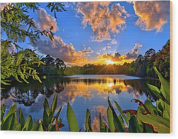 Wood Print featuring the photograph Sunset Over Hidden Lake In Jupiter Florida by Justin Kelefas