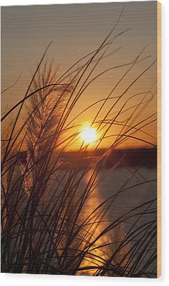 Sunset Over Lake Wylie Sc Wood Print by Dustin K Ryan
