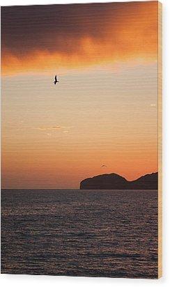 Sunset Over Sea Of Cortez Wood Print by Dina Calvarese