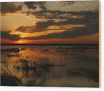 Sunset Over The Marsh Wood Print
