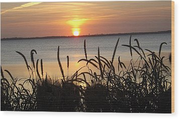 Sunset Over The Sound  Wood Print by Joyce Wasser