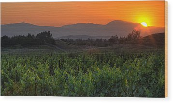 Sunset Over The Vineyard Wood Print by Peter Tellone