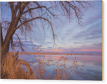 Wood Print featuring the photograph Sunset Overhang by Darren White