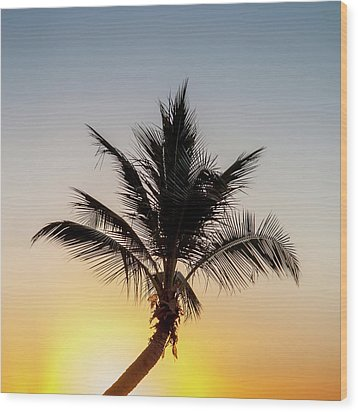 Wood Print featuring the photograph Sunset Palm by Az Jackson