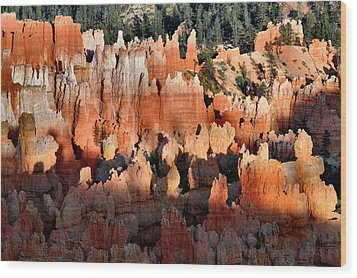 Sunset Point Hoodoos Wood Print by Stephen  Vecchiotti