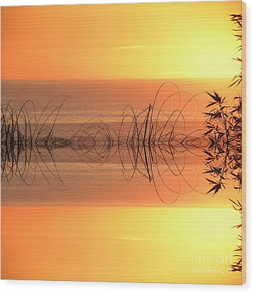 Sunset Reflection Wood Print by Sheila Ping